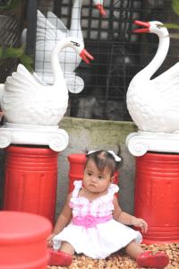 Garden kiddie shoot in Laguna