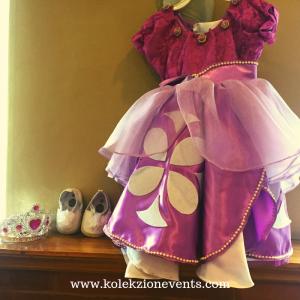 Princess Sofia kiddie dress