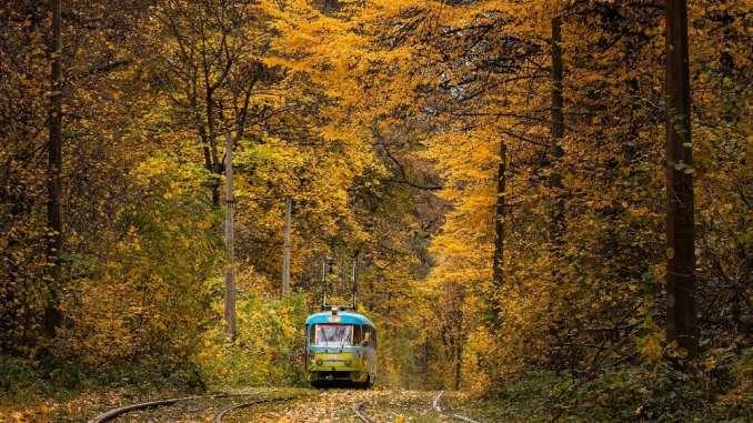 Найдивовижніші пейзажі золотої пори року (+фото)
