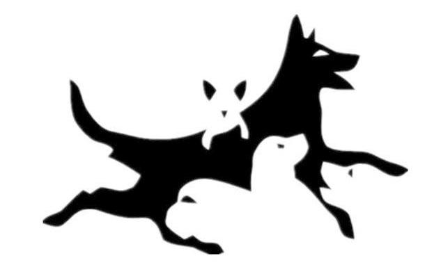 Тест: скільки собак ви бачите на зображенні? Визначимо ваш психологічний вік