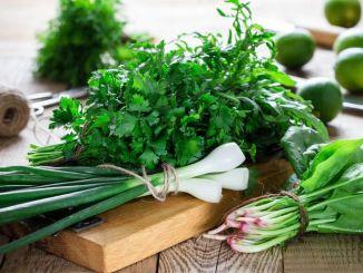 Користь свіжої зелені для організму: як правильно вживати