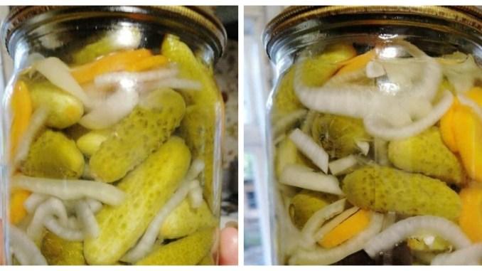 Огірки «По-королівськи» — усі складники просочуються маринадом. Огірочки виходять дуже хрумкі, з незвичним смаком. З баночки з'їдається все: і огірки, і овочі