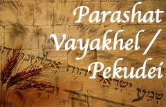 Image result for Vayakhel-pekudei torah portion images