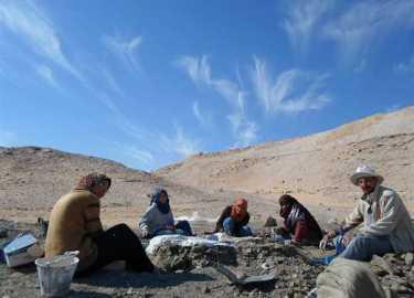 """مكتشفة """"منصورة سورس"""" أول ديناصور يكتشف على أيدي مصريين تحكي ما تعرضوا له في الصحراء ومعاناتهم لخمس سنوات 2 31/1/2018 - 6:39 م"""