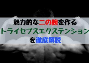 【Forza筋トレ13】魅力的な二の腕を作るトライセプスエクステンション