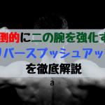 【Forza筋トレ16】圧倒的に二の腕を鍛えるリバースプッシュアップとは?