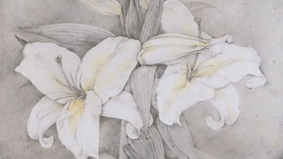 銀筆で描いた百合の花の絵