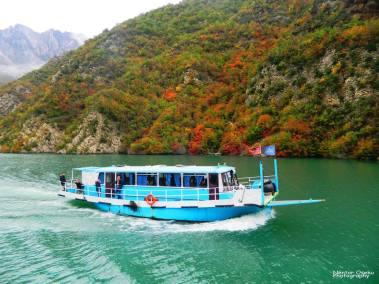 koman lake and fierze (66)