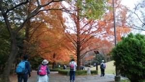 桜が丘公園2