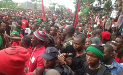 Biafra group