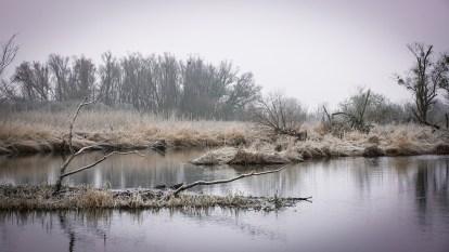 "Frank Brehe ""Nationalpark Unteres Odertal I Teerofenbrücke"""