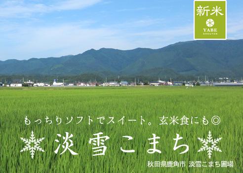 awayukikomati-26