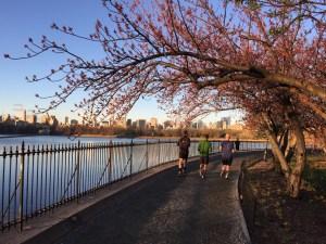 Central Park 06.30