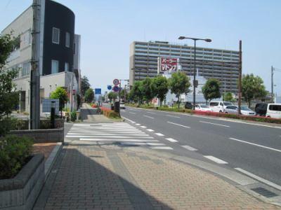 ポレスターセントラルシティ桜の前面道路