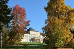 Das Schloss der Universität Hohenheim mitten im herbstlich gefärbten Baumbestand