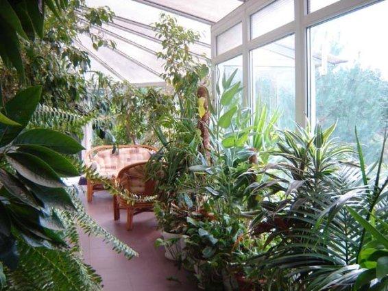 заказать зимний сад на балконе