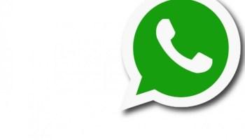 whatsapp...