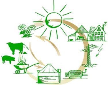 Уникальные результаты по качеству биогаза-метана!