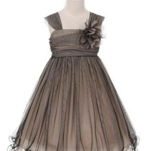 Black/Champagne Compelling Mesh and Taffeta Overlay Dress