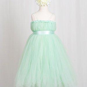 Empyrean Mint Green Tulle Floor Length Dress