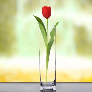 16″ Heavy Duty Square Glass Cylinder Vase