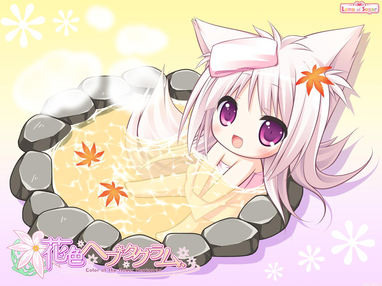animal_ears chibi foxgirl hanairo_heptagram long_hair lump_of_sugar miyuri moekibara_fumitake onsen tail