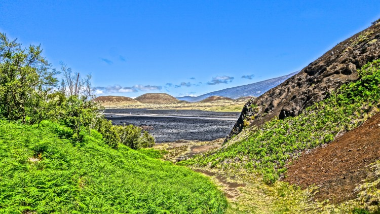 Hiking Trails / Kona / KonaNature.com / 1-844-566-2628
