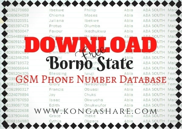 Download Free Borno State GSM Phone Number Database kongashare