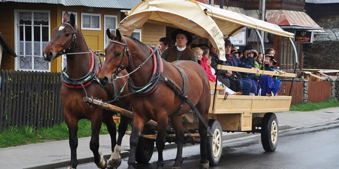 Nasze konie na Małych Bajaniach