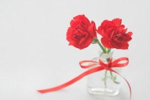 母の日にカーネーション以外の花の花言葉は?