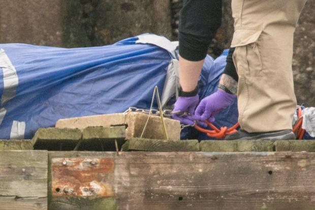 Police find Carmine Carini's body wrapped in a tarp and chained to a cinder block.jpg