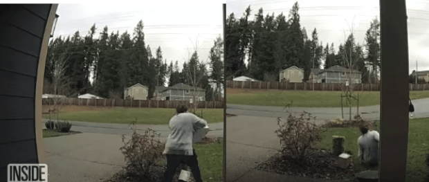 Porch Pirate 6.png