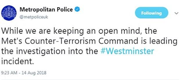 London Metropolitan Police twee t2.jpg