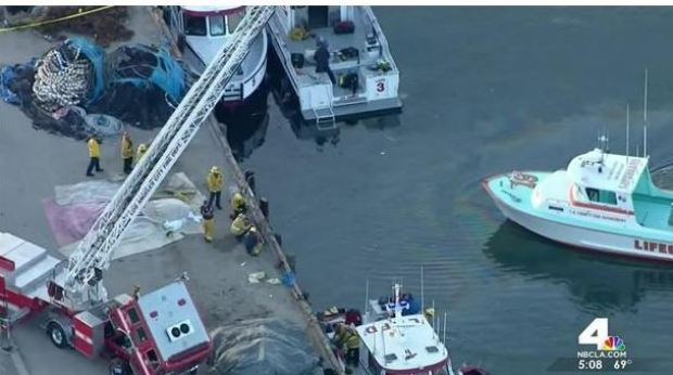 Rescuers pull two boys from a submerged vehicle in LA 2.JPG