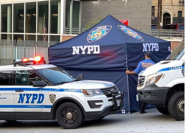Police secure the scene where Juan Rodriguez left his twins Mariza and Phoenix  in his car for 8 hours on a sweltering NY day 2.JPG