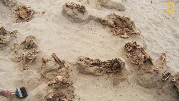Discovery of human remains from a mass child sacrifice in Peru 3.jpg