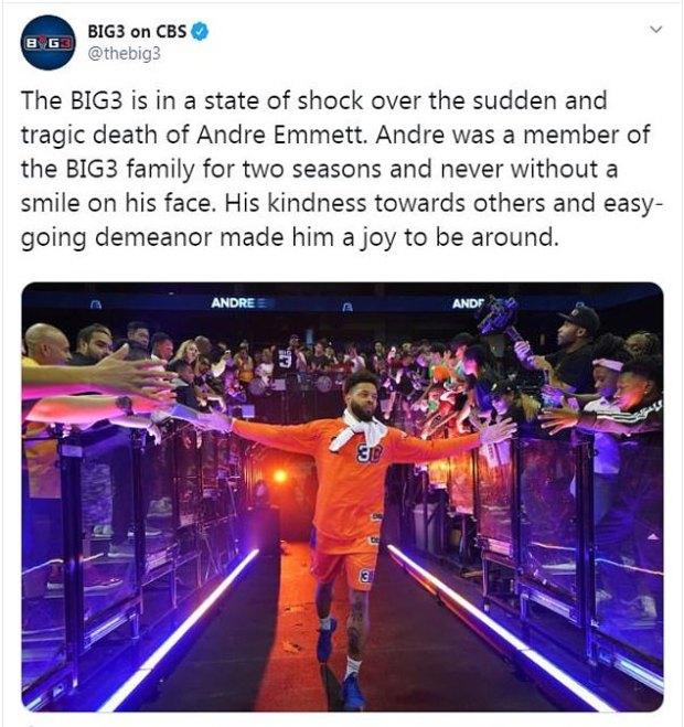 Andre Emett 5.jpg