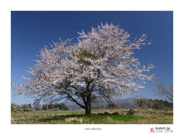 赤城山山麓の風景04