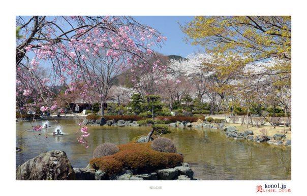藤岡市桜山公園04
