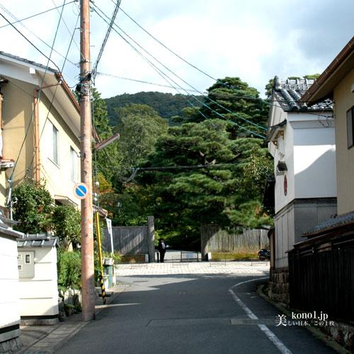 ブログ 京都 修学院離宮
