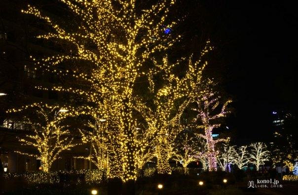 東京 夜景 六本木 クリスマス イルミネーション 東京ミッドタウン  LED  青