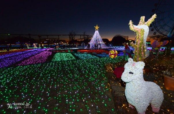 埼玉県 東武動物公園 イルミネーション 夜景 遊園地 観覧車