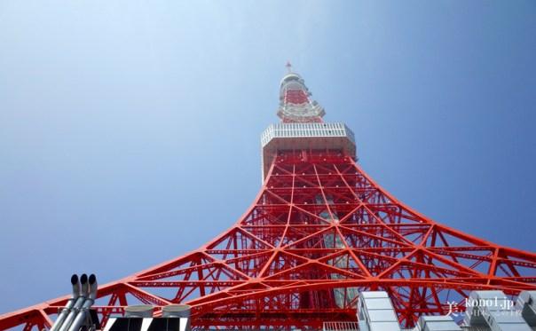 東京タワーバーガー 当店限定 モス