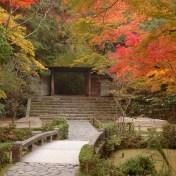 京都 法然院 法然上人 山門 紅葉 白砂壇の模様