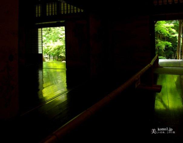 京都 岩倉 実相院門跡 床紅葉 床緑
