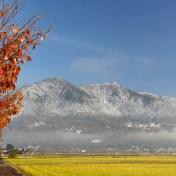 筑波山 11月の積雪 紅葉と雪 茨城県