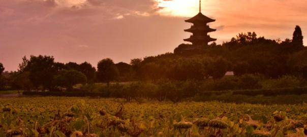 備前国分寺 五重塔 夕焼け 岡山県総社市 美しい風景