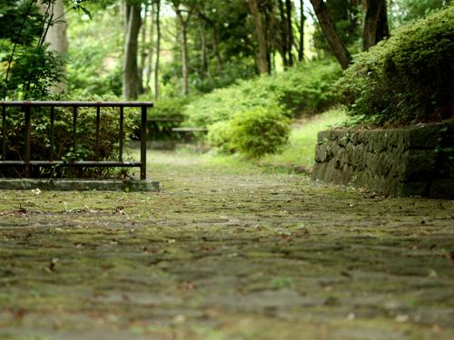 公園の石畳