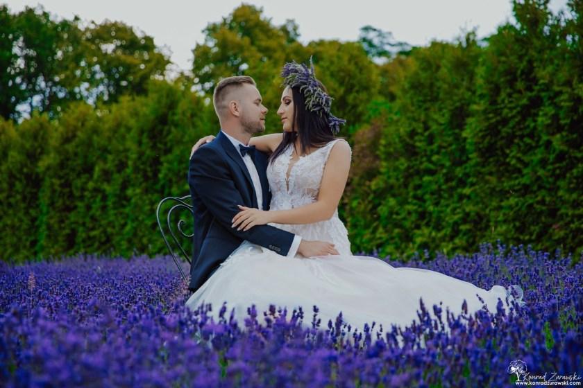 Ślubne zdjęcia w polu lawendy - fotografia ślubna Zgorzelec | Konrad Żurawski