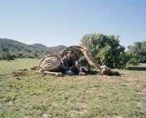 Hunters by David Chancellor